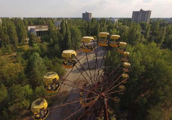 в Сети появились фото диких животных из Чернобыля