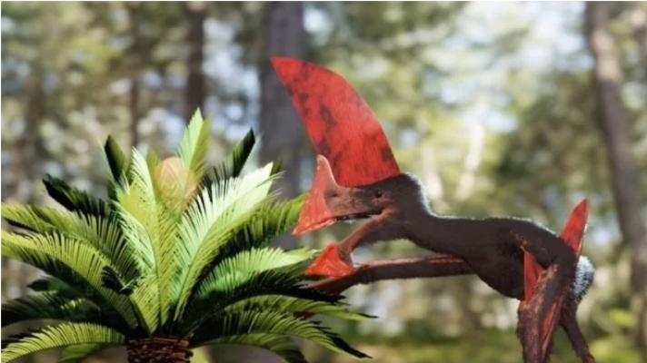 У Бразилії під час рейду поліцейські знайшли скам'янілий скелет динозавра
