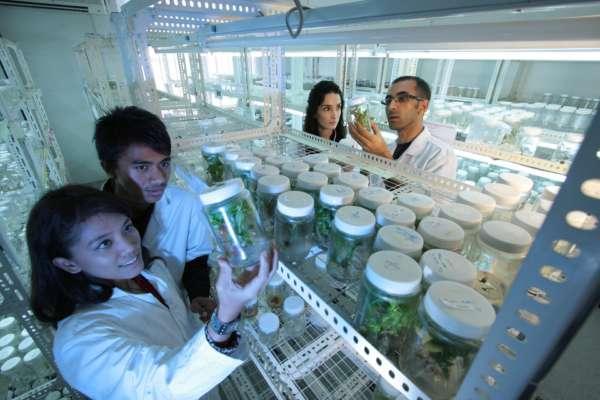 Група вчених