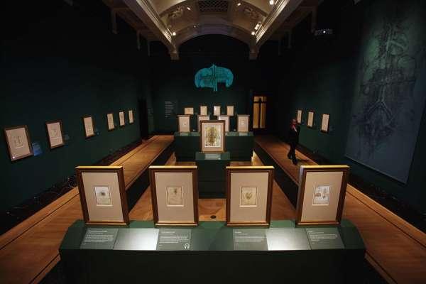 Малюнок Леонардо да Вінчі виставлять на аукціоні за 12 мільйонів фунтів стерлінгів