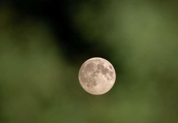 Науковці висунули неочікувану теорію, де на поверхні Місяця може бути прихована вода