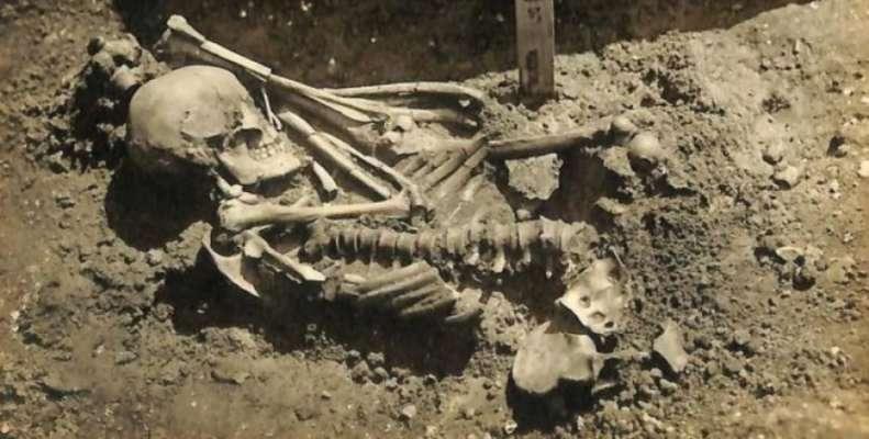 В Японии нашли древнейшую жертву нападения акулы. Скелету мужчины около 3 тысяч лет