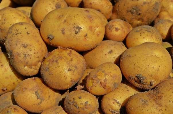 Чистимо картоплю за кілька секунд: корисні лайфхаки