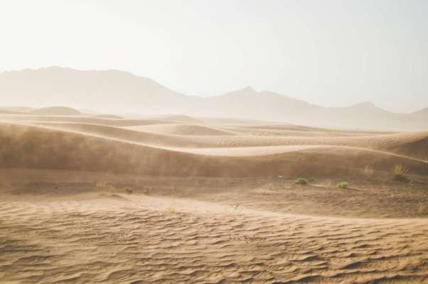 Степная зона в Украине через 30 лет может превратиться в пустыню - прогноз ученого