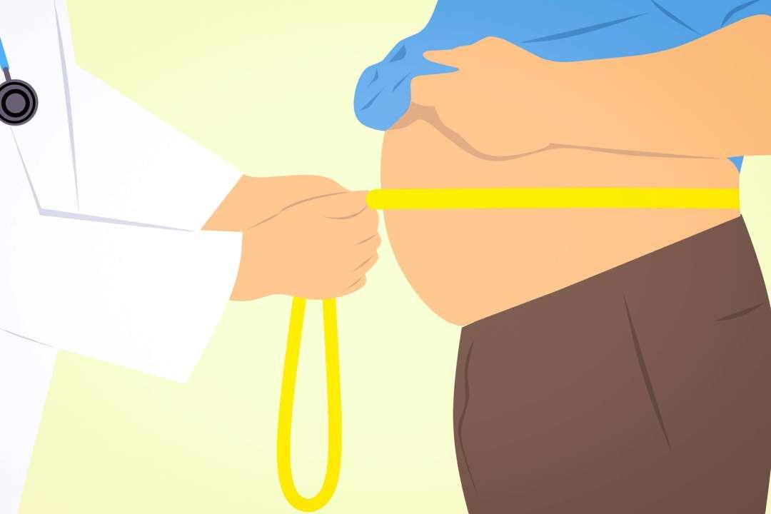 Ученые  навали необычную диету  для похудения