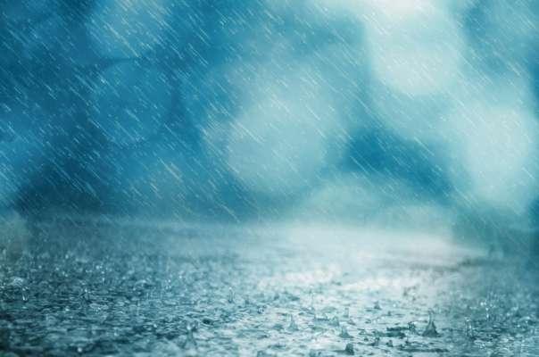 Не обошлось без последствий: по Харькову пронесся мощный ураган