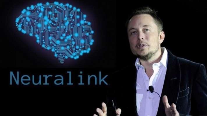 Компанія Ілона Маска Neuralink успішно вживила імплант в мозок мавпи