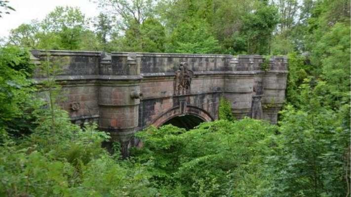 У Шотландії собаки гинуть, стрибаючи з мосту