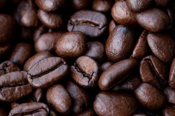 В Финляндии ученые вырастили кофе в лабораторных условиях