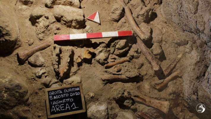Італійські вчені виявили останки неандертальців, які стали жертвами гієн