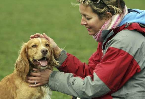 У Німеччині власники собак заплатять за 2021 рік рекордну суму податку