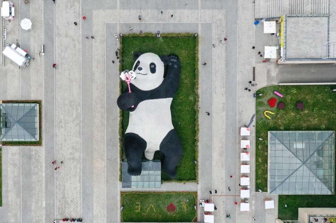 ФОТО. У Китаї встановили гігантську панду, яка робить селфі