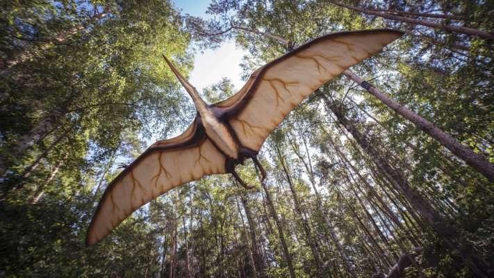 ученые выяснили причину вымирания динозавров