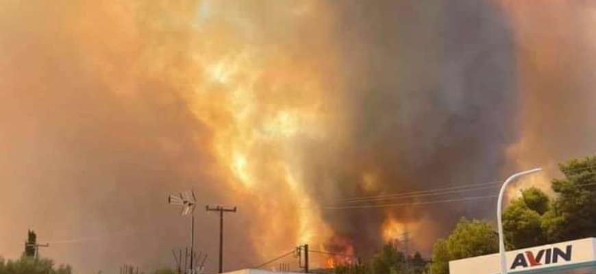В Греции массовые лесные пожары