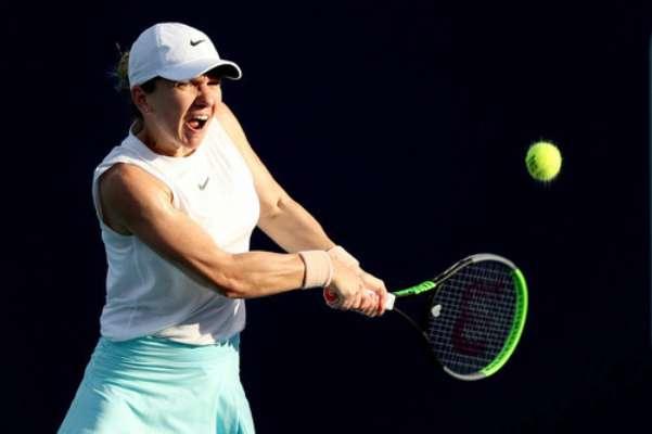 В честь румынской теннисистки назвали новое кровососущее насекомое