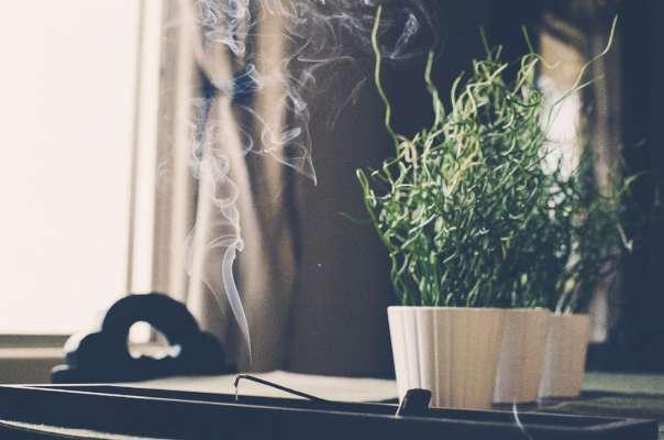 10 способів усунути важкий запах в будинку