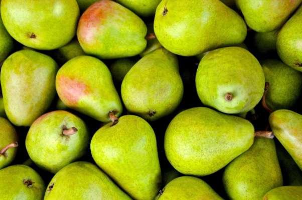 Источник силы и здоровья: три самых полезных фруктов для крепкого иммунитета