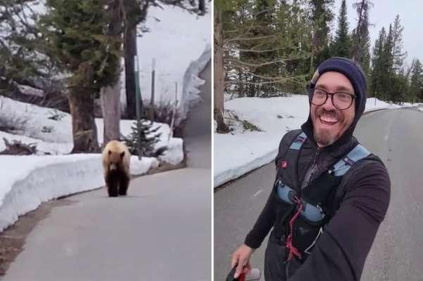 """""""Я тебе не еда"""": мужчина уговорил голодного медведя не есть его. Видео"""