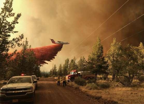 Глобальне потепління: у США лісові пожежі знищили уже 4800 квадратних кілометрів лісу. Фото