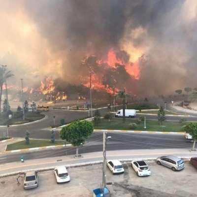 Лесные пожары в Турции добрались до курортов