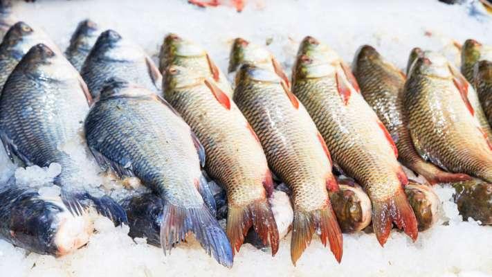 Дефицит рыбы негативно влияет на здоровье и сокращает жизнь