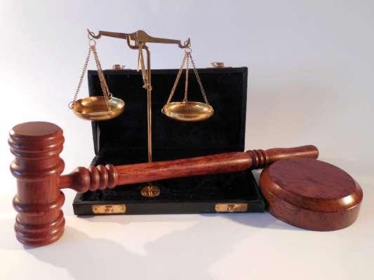 У Миколаївській області суд звільнив жінку від кримінальної відповідальності за вбивство собаки