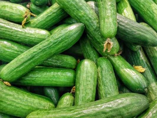 В Україні різко подешевшали огірки: у чому причина