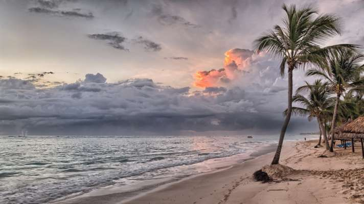 Топ-5 фильмов про пляж и лето, которые стоит обязательно посмотреть