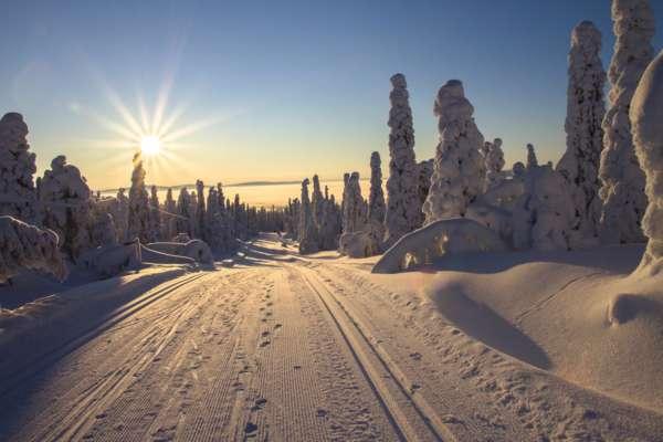 Прогноз погоды в Украине на 5 февраля