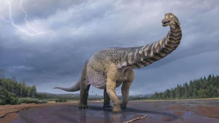 Археологи знайшли останки найбільшого динозавра Австралійського континенту