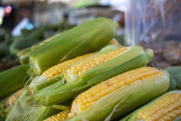 ідеальна кукурудза