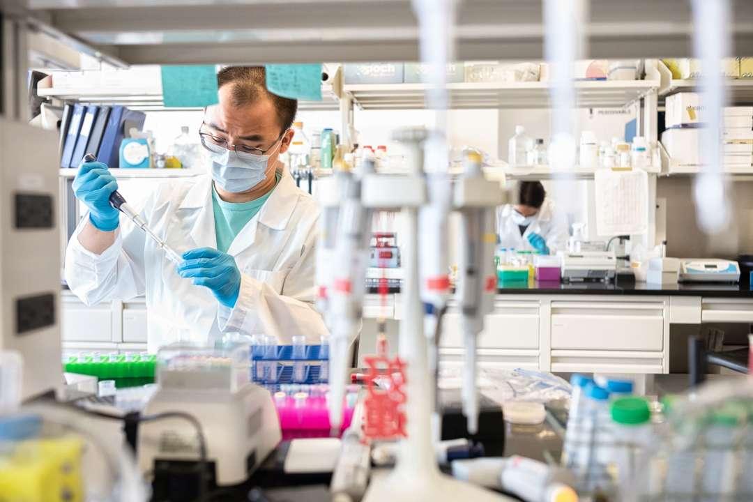 Итальянские ученые выявили, что антитела после заболевания Covid-19 сохраняются не менее 10 месяцев