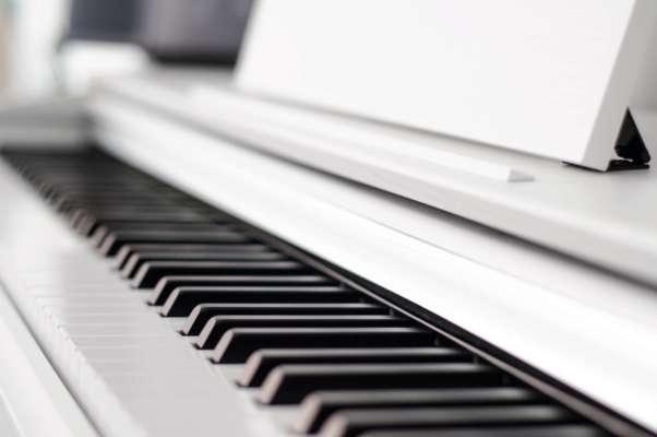 Блогер пише акомпанемент під звуки тварин