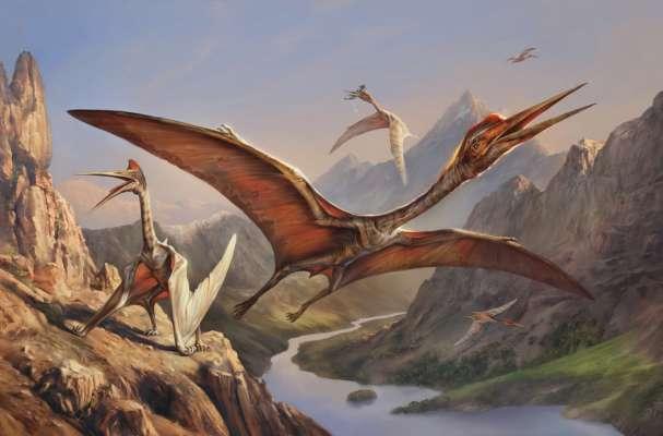 """В Чили археологи нашли остатки """"крылатой ящерицы"""" юрского периода"""