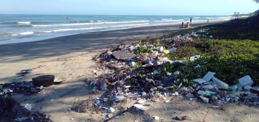 Миру грозит катастрофа: количество пластика в океанах стремительно растет