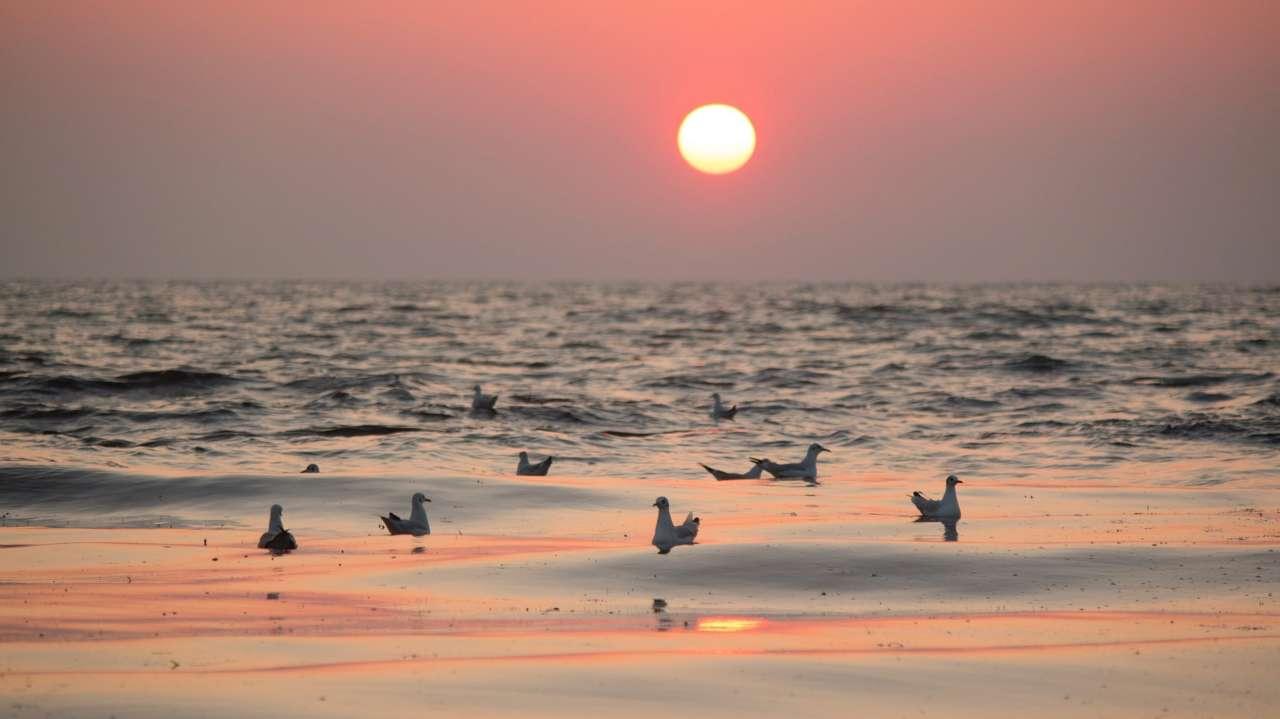 Красное море оказалось вдвое древнее, чем считалось ранее