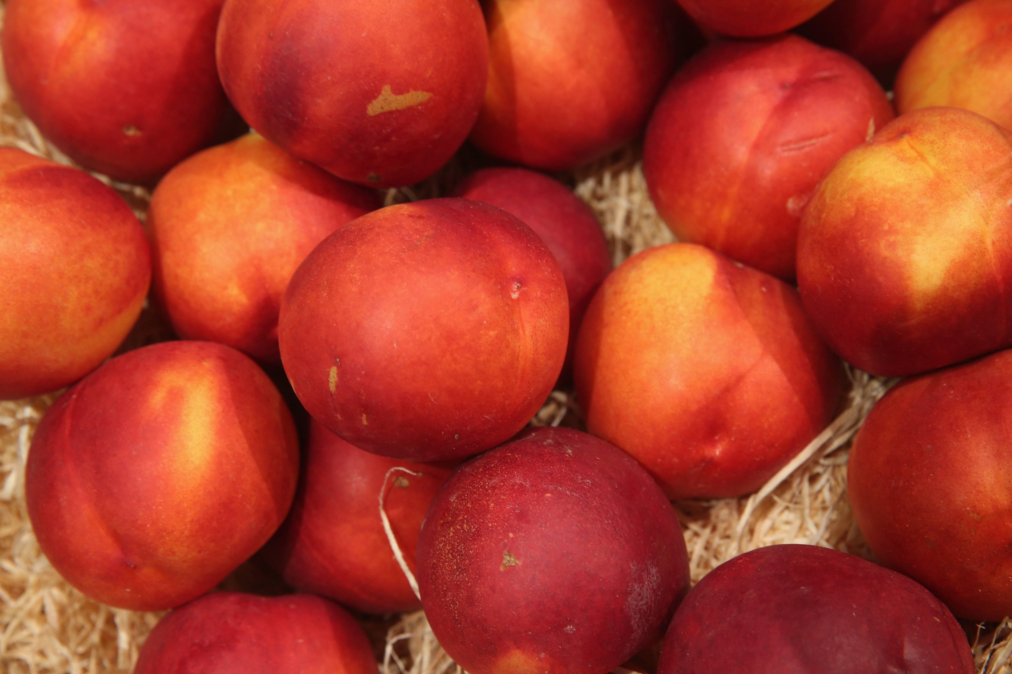 Смачно та корисно: 10 сезонних продуктів, які потрібно включити до раціону, фото-2