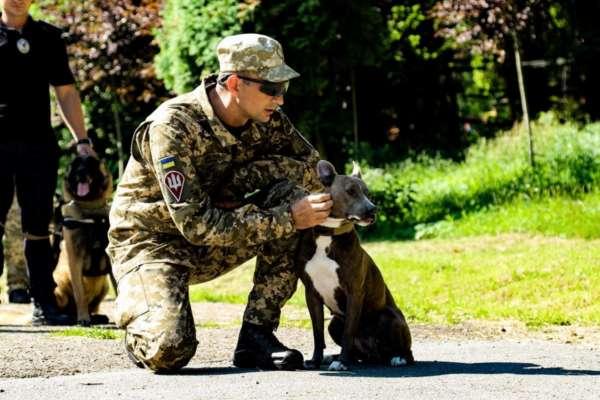 У Львові відбувся парад службових собак