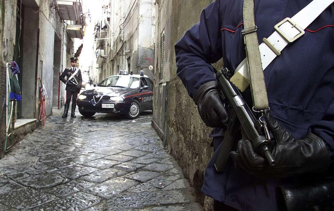 Італійська поліція затримала двох чоловіків за підозрою в підпалі прищепного центру