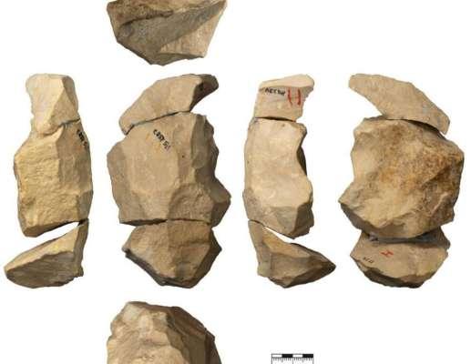 Не такие примитивные, как считалось: неандертальцы использовали сложные технологии производства