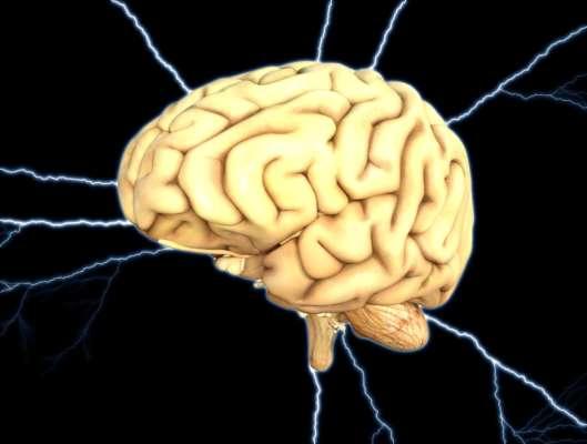 У це складно повірити: вчені дізналися, що відбувається з мозком людини за мить до смерті