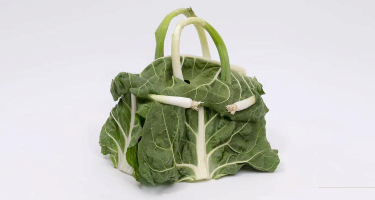 модный бренд представил коллекцию сумок из овощей